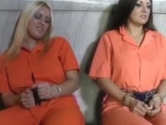 Dani daniels porn star gif collection