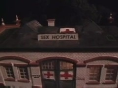At this sex hospital shemales are the best nurses