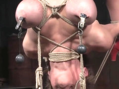 Breast Bonded Sub Hanged And Whipped By Dom