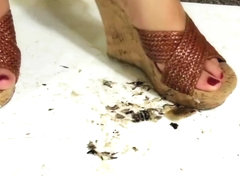 Lillian Sandals Roaches